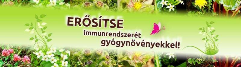 erositse-immunrendszeret1 (1)